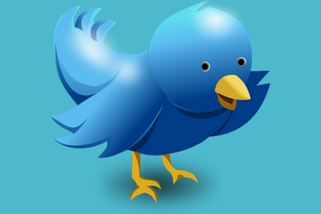 Twitter launches monthly subscription ad program